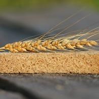 bread-1520402_1920